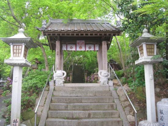 Nyoirinji Temple