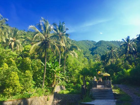 Resort Relax Bali Resmi