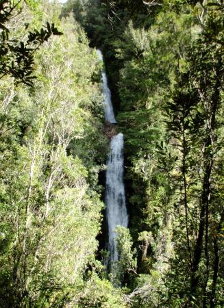 Whangamata, Nueva Zelanda: After hour or so walk up the Wentworth Valley you reach the Falls.