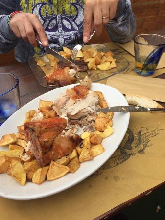 Pollo+