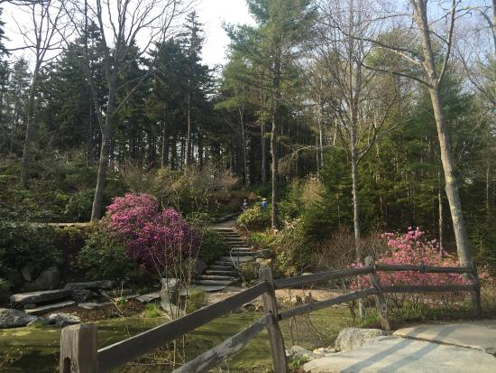 Gardens Aglow Picture Of Coastal Maine Botanical Gardens Boothbay Tripadvisor