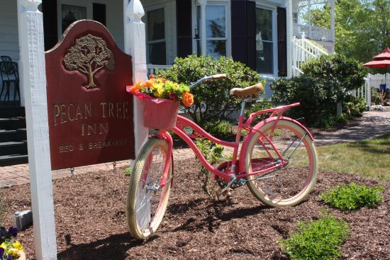 Pecan Tree Inn: Spring Bike ride
