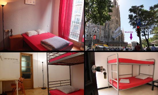 Ole Barcelona Hostel: Ole Montage