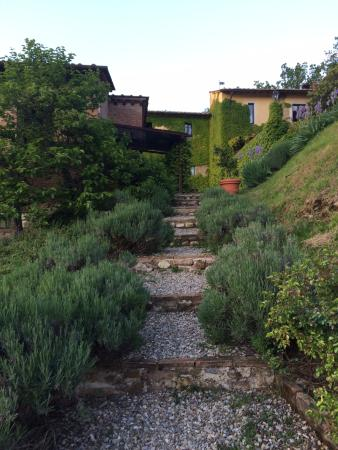 Il Bacio Agriturismo: Pathway from the pool