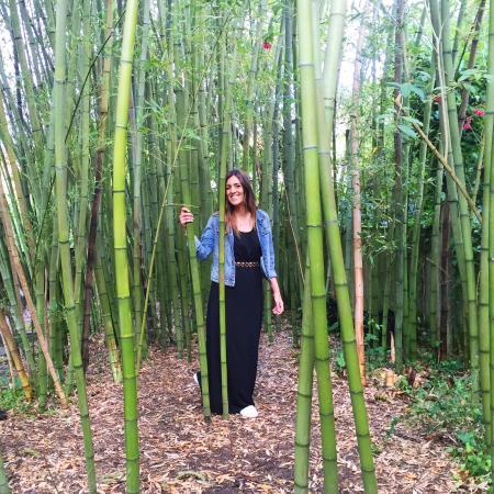 Jard n de bamb fotograf a de fundaci n sales vigo tripadvisor - Jardin de bambu talavera ...