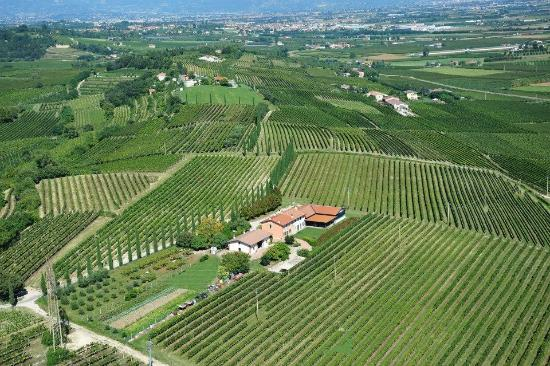 Agriturismo Le Bianchette