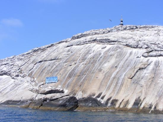 Parque Estadual Marinho da Laje de Santos : Um dos paredões da Laje. Ela é assim, esbranquiçada por causa das fezes dos