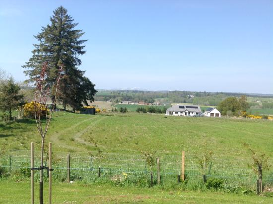 Culbokie, UK: The view from the cottage