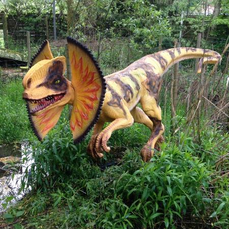 Viry, France : Dilophosaurus venenifer à Tropicaland