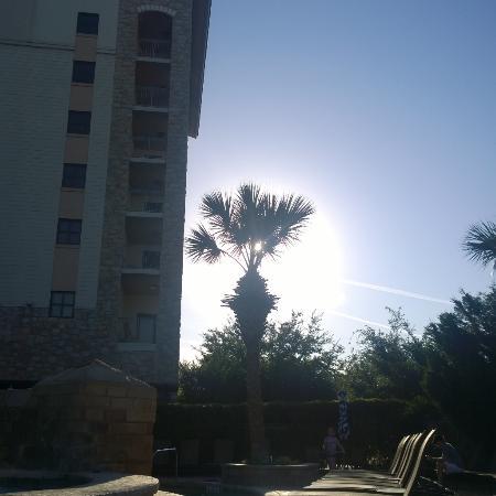 Horseshoe Bay, Teksas: Morning sunrise out by the pool and spa.