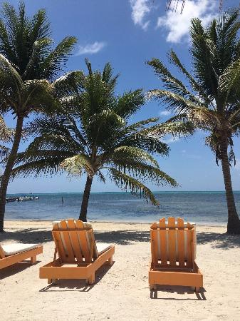 Exotic Caye Beach Resort: view from the chairs on the beach...