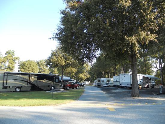 Fair Harbor RV Park : Large Full Service Pull Thrus