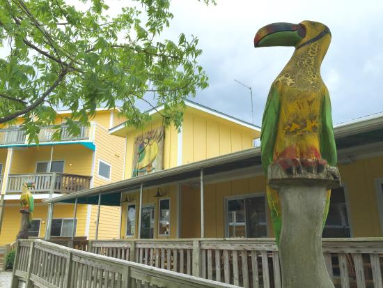 Toucan Grill: Entrance Way
