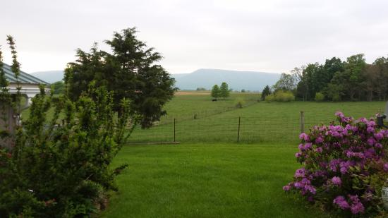 Piney Hill Bed & Breakfast : Peaceful view with the mountains in the background.