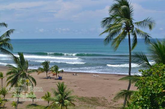 Acqua Residences Jaco : Beach in front of Acqua
