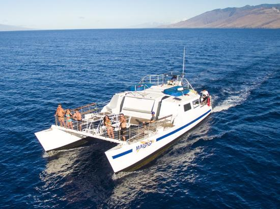 Frogman II Snorkeling Cruise