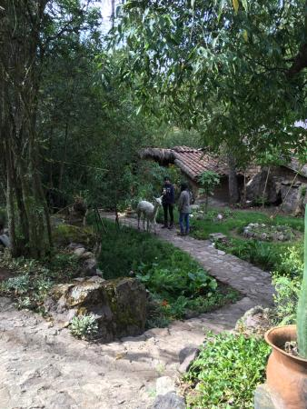 Las Chullpas Eco Lodge ภาพถ่าย