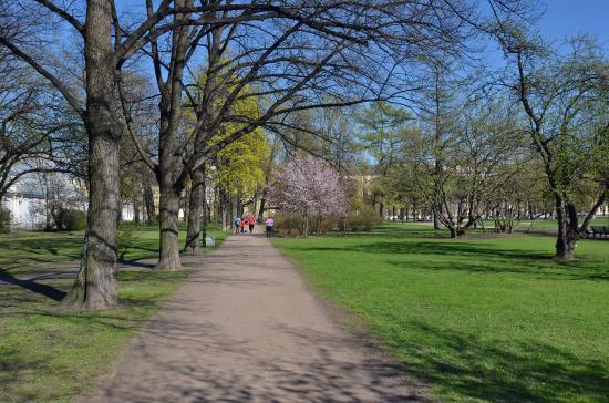 Garden of Smolny