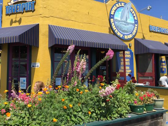 Davenport, CA: photo0.jpg
