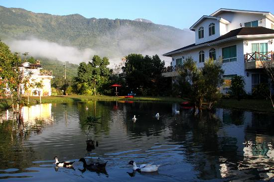 Tree Lake B&B Hualien: 早安,樹湖