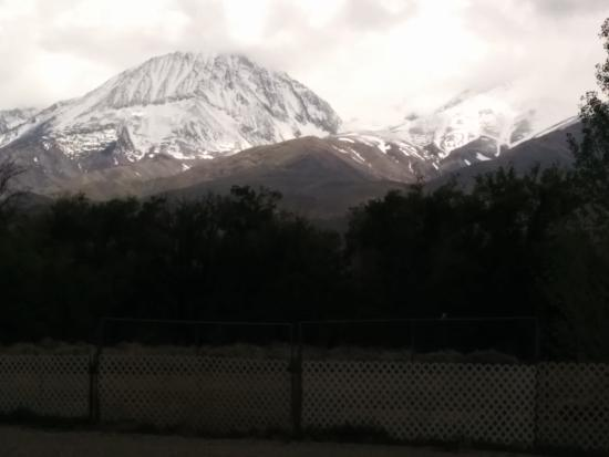 Starlight Motel: Mountain view