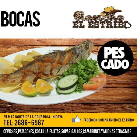 Nicoya, Costa Rica: Pescado Frito