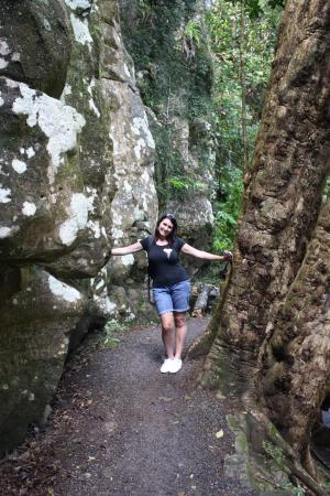Kerikeri, New Zealand: the track that leads down