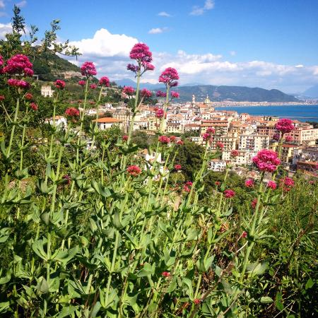 La Soffitta Sul Mare : A view on Vietri-sul-Mare from the road to B&B