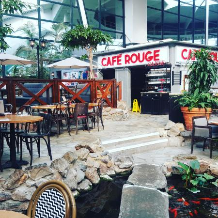 Cafe Rouge - Center Parcs Longleat Forest: great for kids