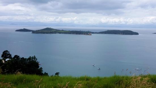 Zdjęcie Wyspa Waiheke