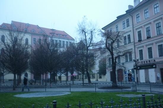 Hotel Cerna Liska Photo