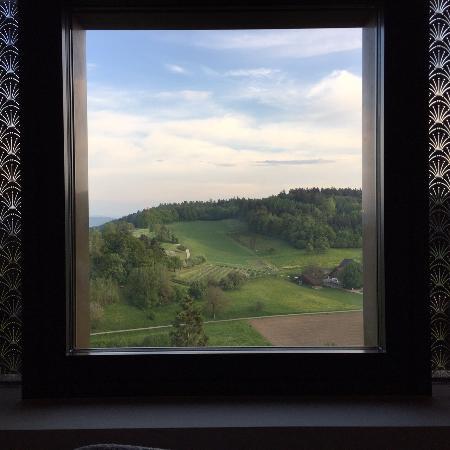 Regensberg, Switzerland: Aussicht vom R
