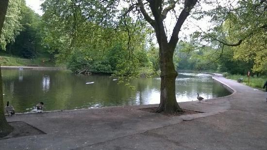 Ward End Park