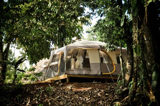 Drake Bay Backpackers : Camping tent $ 10 per person