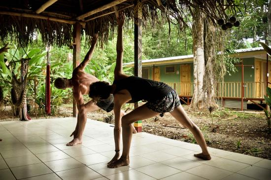Drake Bay Backpackers : Yoga session