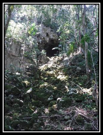 "Actun Chapat : An active cave system you pass during the hike known as the ""Son of Chapat""."