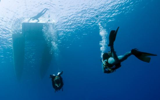 M.Rota Diving