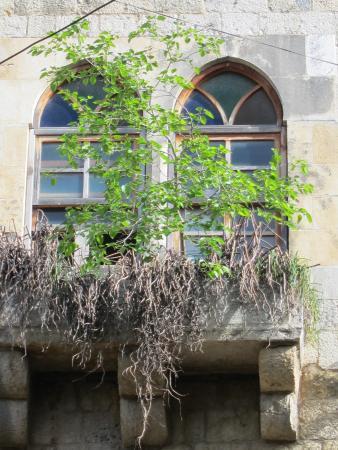 Hasbaya, เลบานอน: Windows and balconies