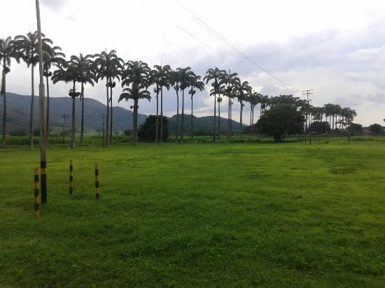 Jose Rafael Revenga, Venezuela: Excelente paseo