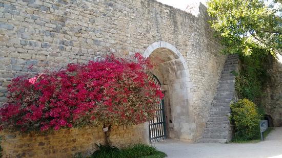 Walking Tours Picture of Portugal4U Albufeira TripAdvisor