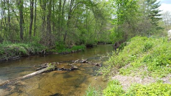 Granby, CT: Salmon Brook