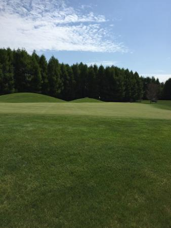 Deer Run Golf Course: #8 Doe Green on a Beauty Day!