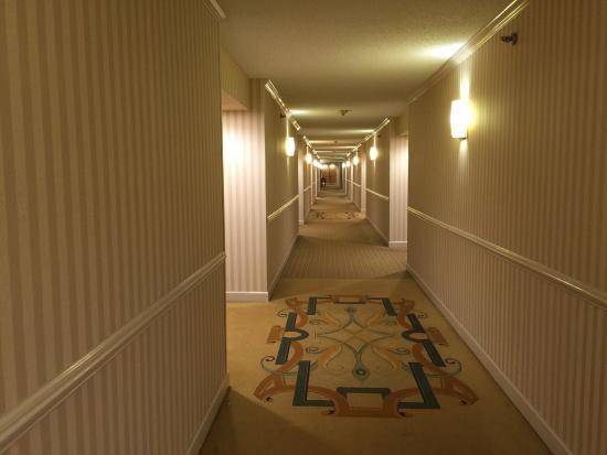 Hilton North Raleigh/Midtown: photo1.jpg