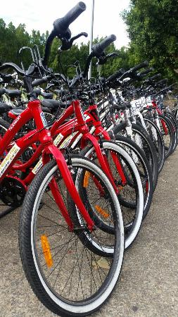 Bike Hire At Sydney Olympic Park Top Tips Before You Go With Photos