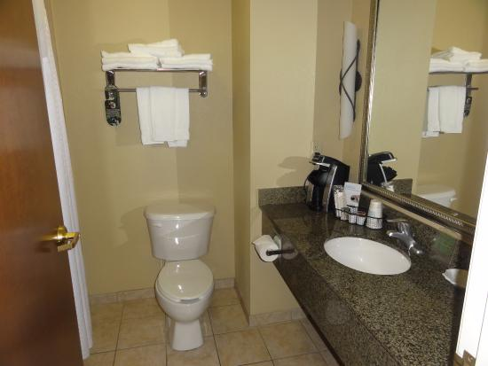 Holiday Inn Express Hotel & Suites Lewisburg : Bathroom