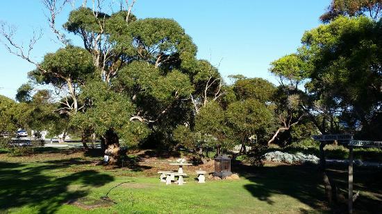 Cape Jervis, Australia: 20160514_090749_large.jpg