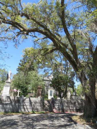 Foto de Wilmington Oakdale Cemetery