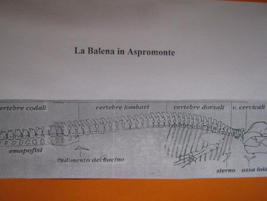 Bova, Ιταλία: la balena dell'Aspromonte