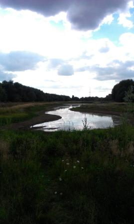 Fobney Island Nature Reserve