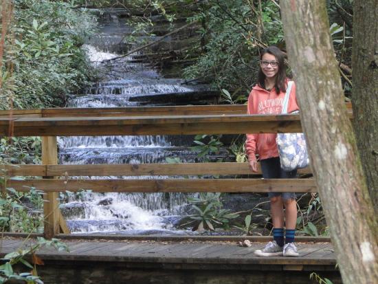 Lakemont, GA: small falls